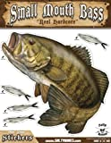 "Salty Bones Large Smallmouth Bass Action Decal - 13.5"" x 10.5"""