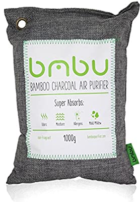 1000g Large Bamboo Charcoal Air Purifier Bag ? Deodorizer and Air Freshener ? Remove Odor and Control Moisture in Your RV, Camper, SUV, Car, Semi truck, Closet, Mobile Home, Storage ? Non fragrant