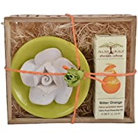 All Naturals No-flame Aroma Diffuser Gift Set With Bitter Orange Essential Oil - 10ml