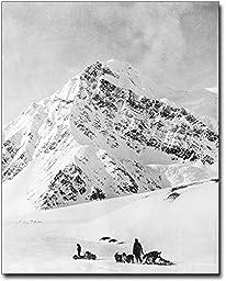 Dogsledding Mt. McKinley Denali Park Alaska 8x10 Silver Halide Photo Print