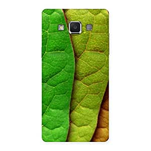 Enticing Leaf Pattern Multicolor Back Case Cover for Samsung Galaxy A5