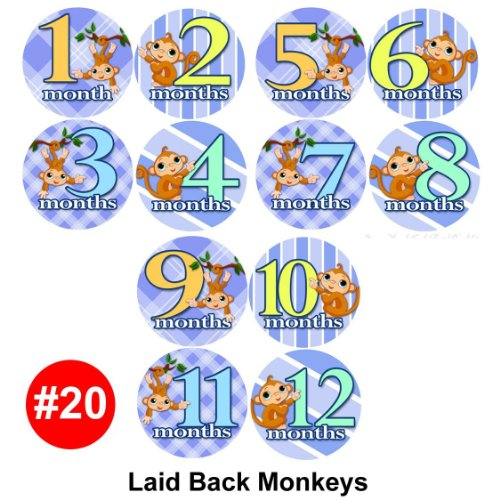 Baby Monthly Photo Stickers For Bodysuits LAID BACK MONKEYS Baby Month Onesie Stickers Baby Shower Gift Photo Shower Stickers, baby shower gift by OnesieStickers