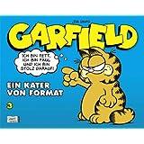 Garfield SC 03: Ein Kater von Format