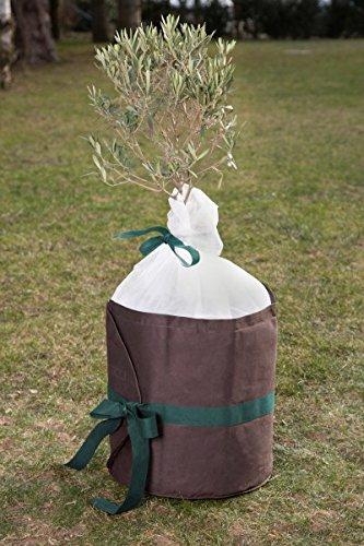 Frostschutzvlies Ø45cm Pflanzkübelschutz Pflanzenkübel Winterschutz Frostschutz