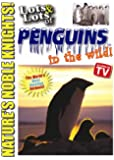 Lots and Lots of Penguins In The Wild DVD