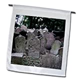 InspirationzStore Photography - Gray headstones in cemetery in Prague - grey graveyard grave stones - creepy spooky gothic halloween - 12 x 18 inch Garden Flag (fl_155665_1)