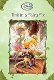 Tink in a Fairy Fix (Disney Fairies) (A Stepping Stone Book(TM))