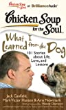 img - for Chicken Soup for the Soul: What I Learned from the Dog: 101 Stories about Life, Love, and Lessons book / textbook / text book