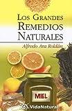 img - for Los Grandes Remedios Naturales (VidaNatural) (Spanish Edition) book / textbook / text book