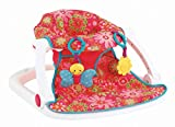 Fisher-Price Sit Me Up Floor Seat - Pink Flowers