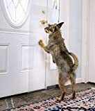 The CLAWGUARD - The Ultimate Door Scratch Shield - Door and Door Frame Protection