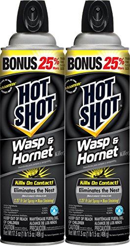 Hot Shot Wasp & Hornet Killer3 (Aerosol) (HG-23416) (17.5-ounce, 2-pack)