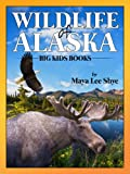 Wildlife in Alaska: A Childrens Animal Picture Book (Big Kid Books)