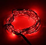 Asunflower® 10M/33ft Copper Wire Flexible LED String Light with 100 Individually Mounted LED's Starry String Lights Fairy Lights For Christmas Wedding Party Birthday Holiday Bedroom Decoration with 12V 2A US Standard Power Adapter AC 100V-240V to DC 12V 2.0A Converter, Waterproof LEDs (Red, 10M/33ft)