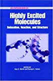 img - for Highly Excited Molecules: Relaxation, Reaction, and Structure (ACS Symposium Series) book / textbook / text book