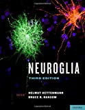 img - for Neuroglia by Bruce R. Ransom (2013-02-07) book / textbook / text book
