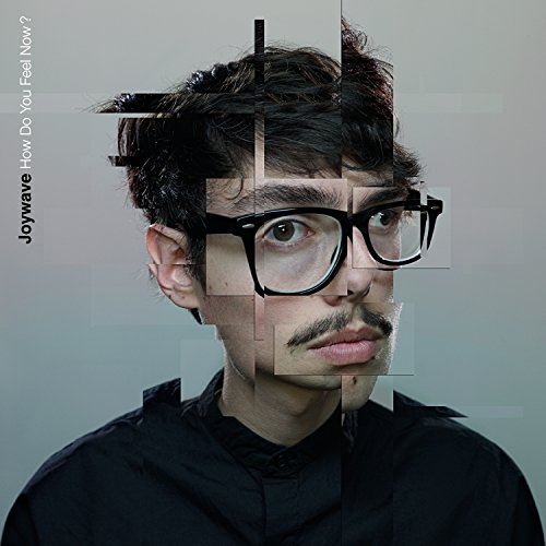 Original album cover of How Do You Feel Now? by Joywave