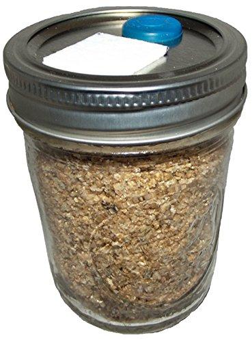 BRF Jars Brown Rice Flour Mushroom Substrate (Vermiculite Jars compare prices)