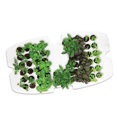 miracle-gro-aerogarden-seed-starting-system-for-classic-7-models