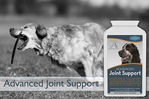 Advanced Joint Support Supplement Powder For Cats Dogs Review