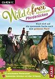 Wild & Frei Abenteuer Pferderücken