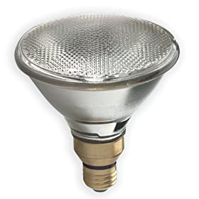 GE 17979 50 Watt Outdoor Halogen Floodlight PAR38 Light Bulb