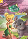 img - for Disney Fairies Graphic Novel #11: Tinker Bell and the Most Precious Gift by Orsi, Tea, Panaro, Carlo (2013) Paperback book / textbook / text book
