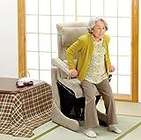 フランスベッド 電動座いす型リフトアップチェア800