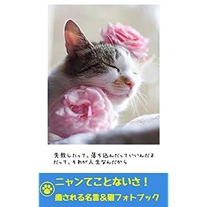 ニャンてことないさ! 癒される名言&猫フォト集: 猫と名言で癒されるフォトブック