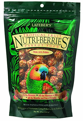 lafeber-nutri-berries-tropical-fruits-284-gr
