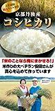 【安心・安全】京都産の美味しいお米!幻の特Aランク米!『平成22年産・特A・京都丹後産コシヒカリ5kg』 ※注文を受けてから精米しますので、発送まで1週間程度お時間をいただきます。 / フリースタイル