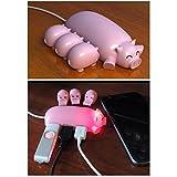 Naughtygifts Cute Mom Pig USB Hub with 3 piglet decoration lids, Toooo cute, Best Gift Choice, Random Color