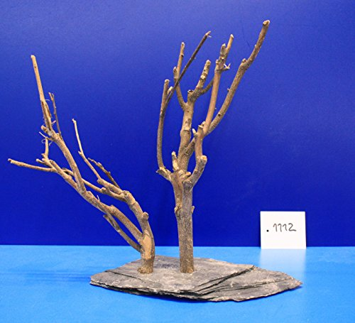 Eau-Flora-2-Fein-Dcor-en-sapin-sur-ardoise-25-x-25-x-11-1112-sur-plateau-ardoise