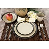 Omega 16 Piece Dinnerware Set Color: Pearl
