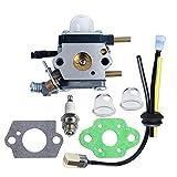 HIPA C1U-K54A Carburetor with Gasket Repower Kit Spark Plug for Echo Mantis Tiller TC-210 TC-210i TC-2100 SV-6 SV-5H/2 SV-5C SV-4B LHD-1700 HC-1500