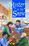 img - for Mystery in the Snow (Treasure series) book / textbook / text book