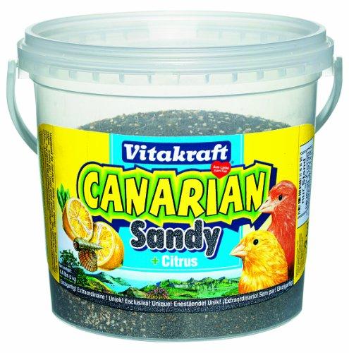 Sandy Vogelsand Canarian Sandy + Citrus Kanarien