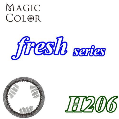 MAGICCOLOR (マジックカラー) fresh H206 度なし 14.0mm 1ヵ月使用 2枚入り