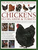 img - for The Practical Guide to Keeping Chickens, Duck, Geese & Turkeys: A directory of poultry breeds and how to keep them: with step-by-step instructions and more than 650 colour photographs book / textbook / text book
