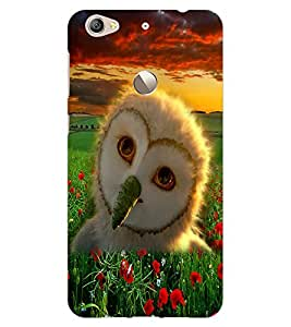 ColourCraft Owl Design Back Case Cover for LeEco Le 1S