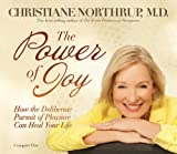 The Power of Joy: How the Deliberate Pursuit of Pleasure