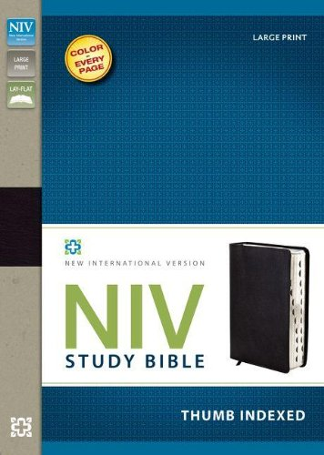 download free niv bible pdf