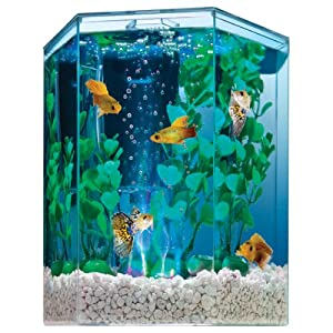 Tetra 29040 Hexagon Aquarium Kit with LED Bubbler, 1-Gallon