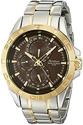 Armitron Men's 20/5059BNTT Multi-Function Brown Dial Two-Tone Stainless Steel Bracelet Watch