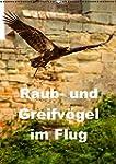 Raub- und Greifv�gel im Flug (Wandkal...