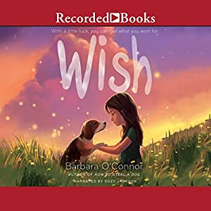 Wish Audiobook