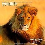 Wildlife 2014. Trends & Classics Kalender