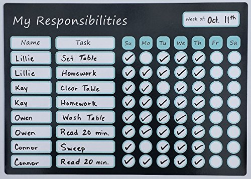 "Magnetic Responsibility Chart Dry Erase Board 9.75"" X 14"" with Marker Pen/Eraser Tip. Chore Chart/Reward Chart"
