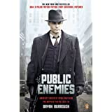 Public Enemies: America's Greatest Crime Wave and the Birth of the FBI, 1933-34by Bryan Burrough