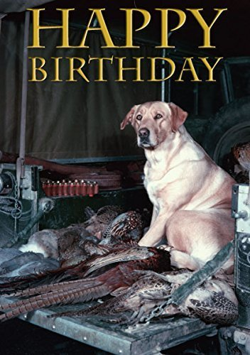 Vintage Labrador Birthday Card. Yellow Labrador in back of Shoot Land Rover- perfect for people who like shooting and field sports. By Charles Sainsbury-Plaice